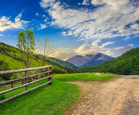 unreal summer landscape. fence near the meadow crossroad path on the hillside composit with forest on the mountain