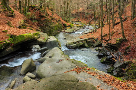 mountain river with stones and moss in the late autumn forest  Stock Photo