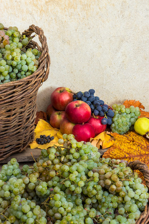 autumnal fruit still life with apples, quince, grapes and leaves on old wall  Stock Photo