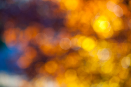 Abstract light blur through the leaves of the tree crown at sunset Stock Photo