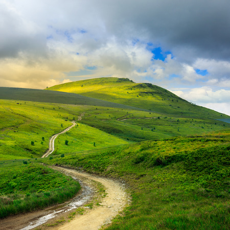 summer landscape. mountain path through the field turns uphill to the sky