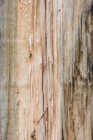 Barn Wood Cargo Crate  cracked and knotty wood texture