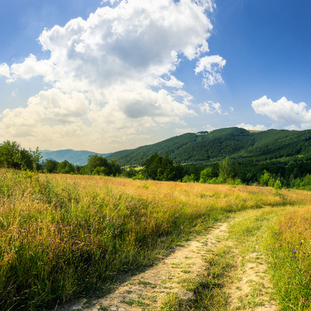 road going into mountains and passes through the green shaded forest in the field Stock Photo