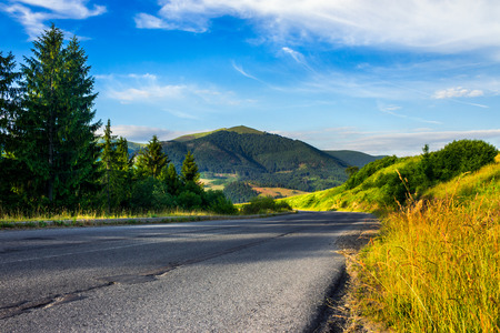 asphalt road going to high mountains down the hill and  passes through the green shaded forest at sunrise