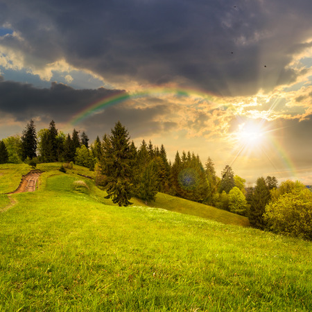 awesome wallpaper: calm summer landscape in mountains. awesome coniferous forest near meadow  on hillside under epic sky with clouds at sunset with rainbow Stock Photo