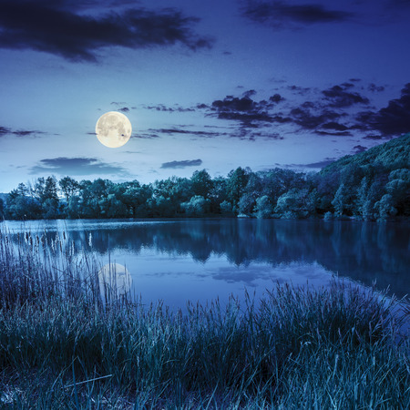 view on lake near the forest on mountain background at night in full moon light photo