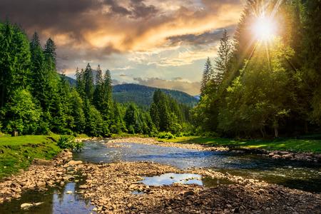 석양 산 발 근처 숲에서 돌 강