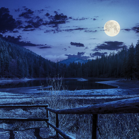 view on lake near the pine fores in mountains at night in full moon light photo