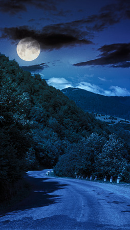 asphalt road going off into the distance on the left, passes through the green shaded forest at night in full moon light