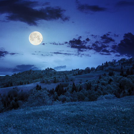 summer landscape. village on the hillside. forest on the mountain light fall on clearing on mountains at night in full moon light Foto de archivo