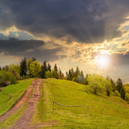 wide trail with a wooden fence near the lawn in green forest with pine trees  in mountains at sunset Stock Photo