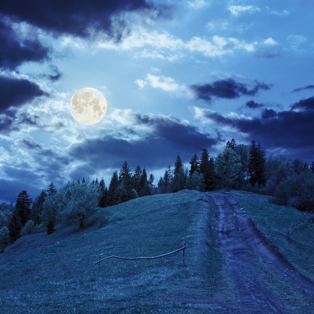 wide trail with a wooden fence near the lawn in green forest with pine trees  in mountains at night in full moon light Stock Photo