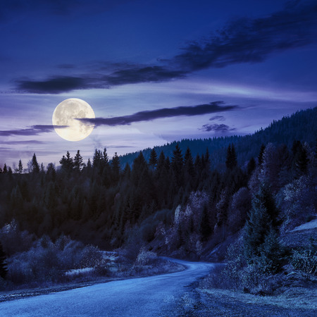 autumn mountain landscape. asphalt road going to mountains passes through the ever green coniferous shaded forest at night in full moon light