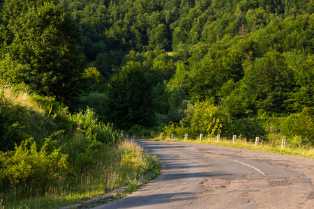 old cracked asphalt road going through the green shaded forest in mountains
