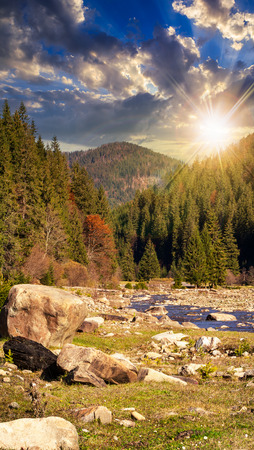 mountain river with stones and moss in the forest near the mountain slope at sunset