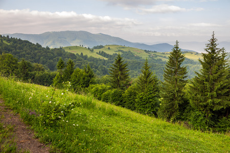 slope of mountain range with coniferous forest and village Stock Photo