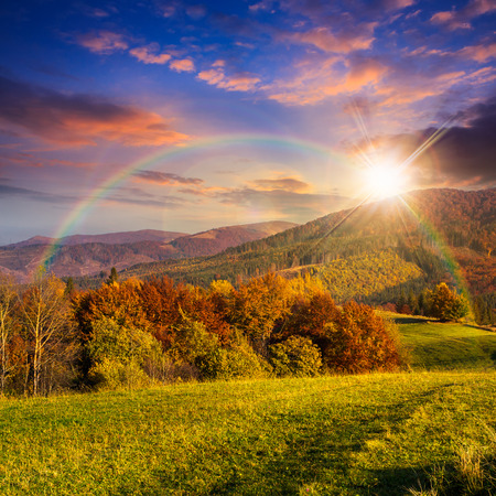 yellow and orange trees on autumn meadow in mountains at sunset with rainbow photo