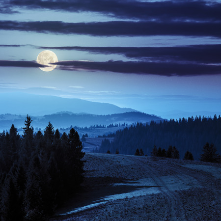 fool moon: coniferous forest on hillside over foggy valley in autumn mountains at night in fool moon light