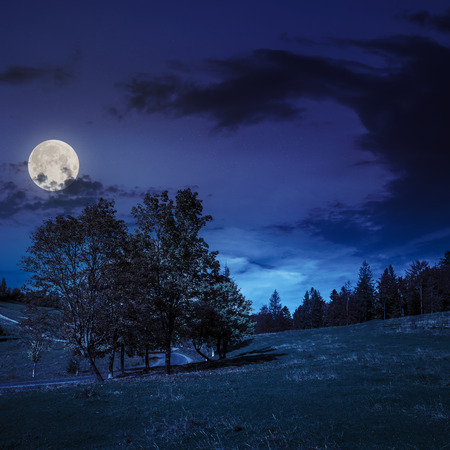 fool moon: asphalt road going through green meadow with trees near autumn forest with foliage on hill at night in fool moon lighy