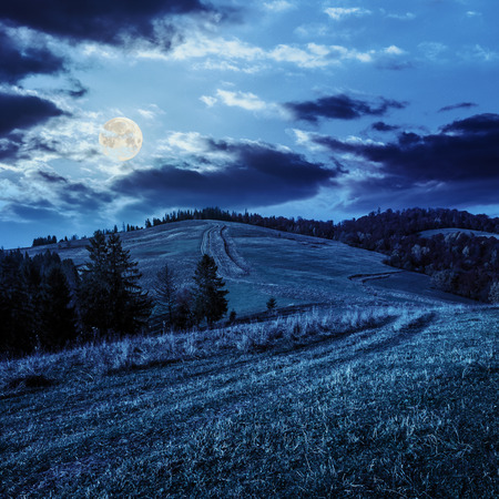 fool moon: hillside of mountain range with coniferous and mixed autum forest at night in fool moon light Stock Photo