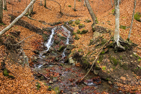 mountain river with stones and moss in the autumn forest near the mountain slope