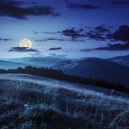 Stack of hay on a green meadow near the village in mountains at night in full moon light photo