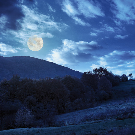 autumn landscape. yellow trees near green meadow in foggy mountains at night in full moon light photo