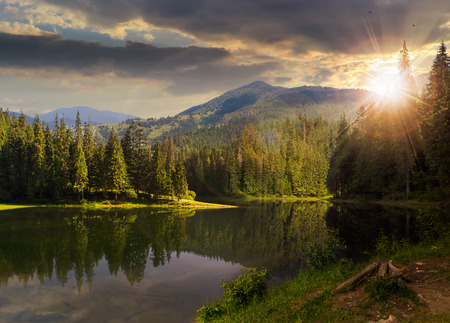 view on lake from shore  near the pine forest on mountain background with hight vista at sunset light
