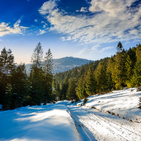 winter mountain landscape. road that leads into the pine forest covered with snow Stock Photo