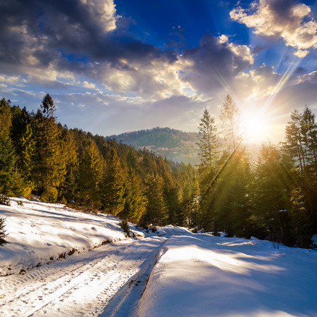winter mountain landscape. road that leads into the pine forest covered with snow in sunset light