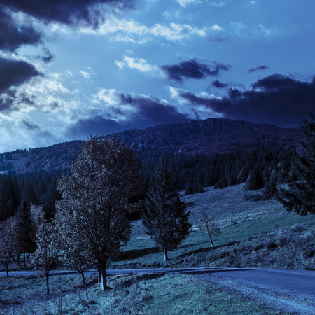 asphalt road going  passes through the autumn forest in mountain at night in full moon light
