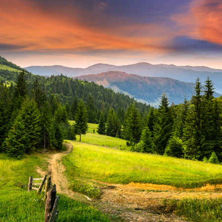 composit landscape. fence near the meadow path on the hillside. forest in fog on the mountain at red sunrise photo