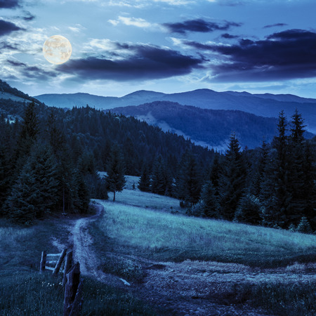 composit: composit landscape. fence near the meadow path on the hillside. forest in fog on the mountain at night in full moon light