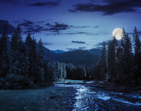 wonderfull: collage landscape with pine trees in mountains and a river in front flowing to lake at night in full moon light