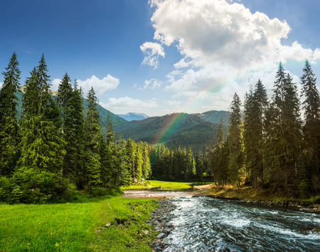 mountain stream: collage landscape with pine trees in mountains and a river in front flowing to lake in sunset light with rainbow Stock Photo