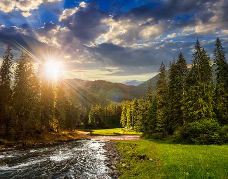 paisaje collage de pinos en las montañas y un río que fluye frente al lago en la luz del atardecer
