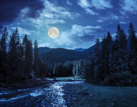 collage landscape with pine trees in mountains and a river in front flowing to lake at night in full moon light