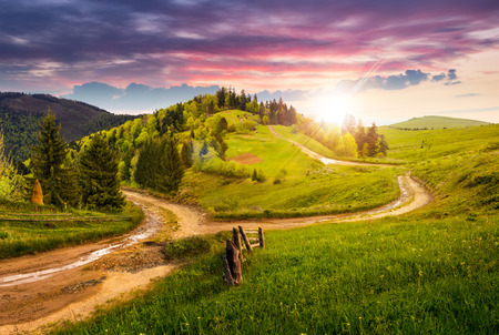 composite autumn landscape. fence near the cross road on hillside meadow in mountains. few fir trees of forest  on both sides of the road in sunset light Stok Fotoğraf