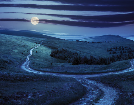 composite landscape. fence near the cross road on hillside meadow in mountains. few fir trees of forest  on sides of the road at night in full moon light Stock Photo