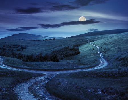 sides: composite landscape. fence near the cross road on hillside meadow in mountains. few fir trees of forest  on sides of the road at night in full moon light Stock Photo