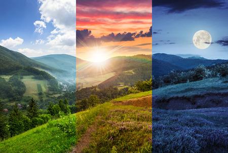 Jour et nuit composite paysage de montagne. fleurs sur une colline près du village de prairie en forêt de montagne brumeuse Banque d'images - 35112067
