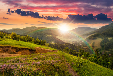 composite mountain landscape. flowers on hillside meadow near village in foggy mountain  forest in sunset light with rainbow
