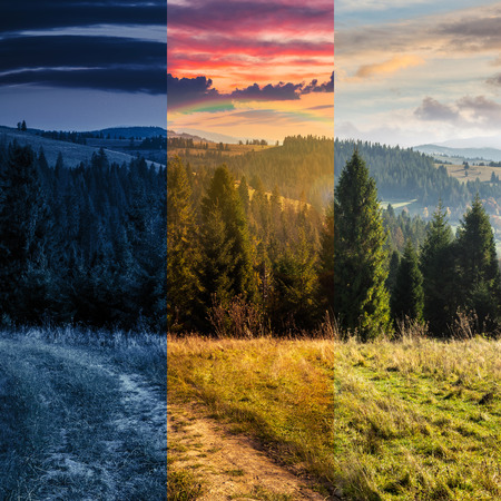 day and night collage of composte hillside of mountain range with coniferous forest and meadow path image