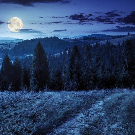 composite image of hillside of mountain range with coniferous forest and meadow path at night in full moon light 免版税图像