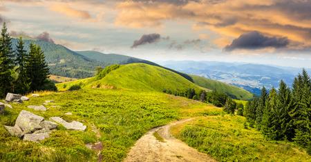 複合山の風景。松の木と岩に近い丘の中腹に朝の光で牧草地パス
