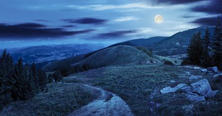 paesaggio montano composito. pini e massi vicino a prato percorso sulla collina di notte in piena luce lunare