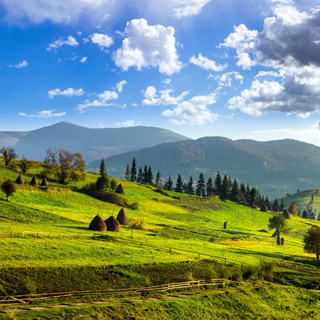 山の緑の草原の干し草の山近くにパスとたい肥風景