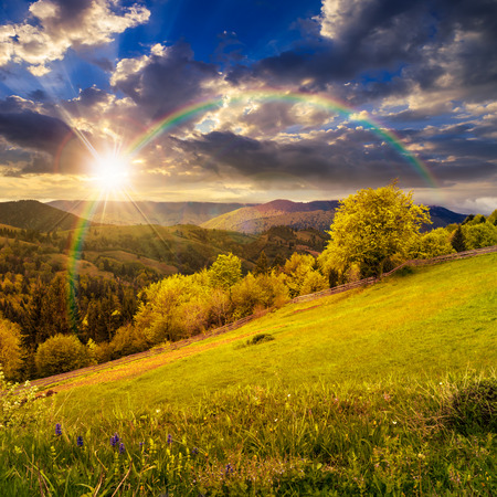 複合農村風景。草原と丘の中腹に木の近くのフェンス。虹と夕日の光の中で山の上に霧の森