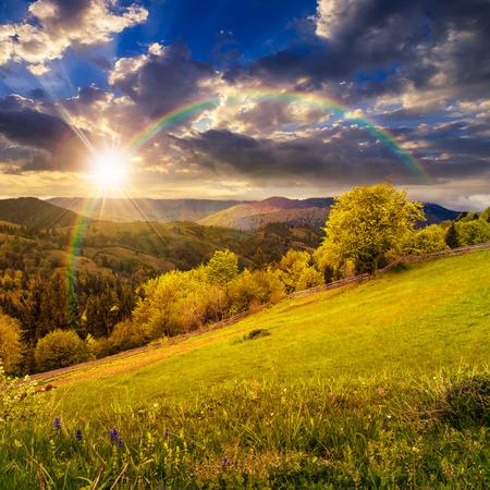 arco iris: paisaje rural compuesta. valla cerca de la pradera y �rboles en la ladera. de bosque de niebla en la cima de la monta�a en la luz del atardecer con el arco iris