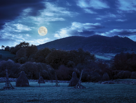composite agriculture landscape with stack of hay on a green meadow near forest near the foot of the mountain at night in full moon light Stock Photo